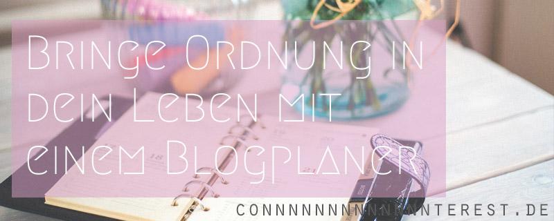 blog-planer-twitter-v